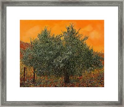 Un Altro Ulivo Al Tramonto Framed Print by Guido Borelli