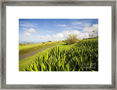Ulupalakua Country Road Framed Print by Ron Dahlquist - Printscapes