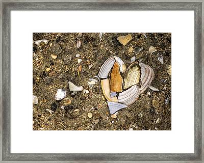 Unbreak My Heart Framed Print by Evelina Kremsdorf