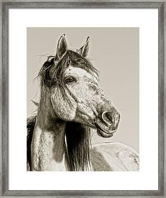 Unbroken Framed Print by Ron  McGinnis