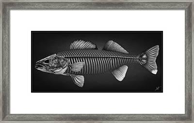 Undead Walleye Framed Print by Nick Laferriere