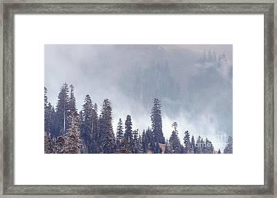 Under A Fog Framed Print by Svetlana Sewell