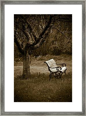 Under The Old Apple Tree Framed Print by Frank Tschakert