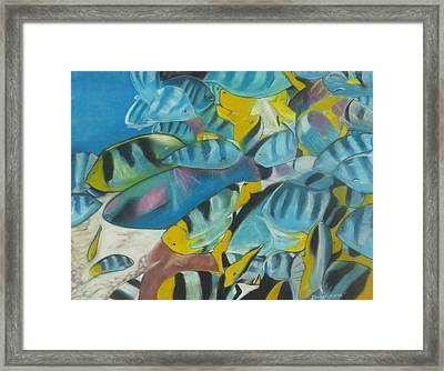 Under The Sea Framed Print by Demitrius Roberts