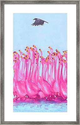 Underdressed Framed Print by Jane Schnetlage