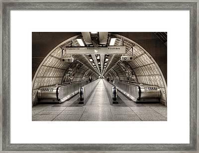 Underground Life Framed Print by Svetlana Sewell
