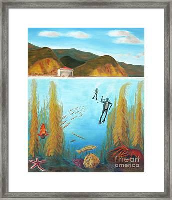 Underwater Catalina Framed Print by Nicolas Nomicos