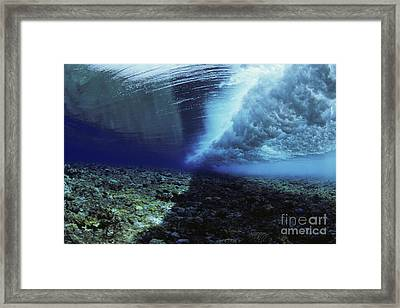 Underwater Wave - Yap Framed Print by Dave Fleetham - Printscapes