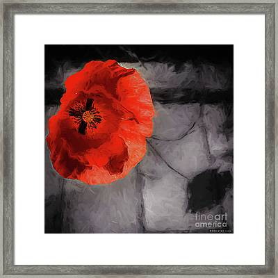 Unforgotten Framed Print by Mona Stut