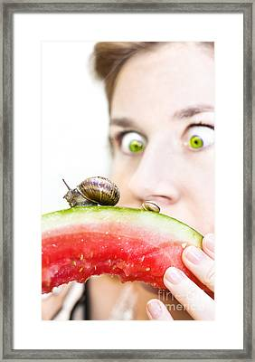 Uninvited Dinner Guests Framed Print by Jorgo Photography - Wall Art Gallery