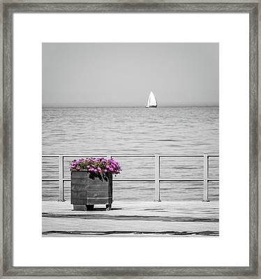 Unnoticed Framed Print by Wim Lanclus
