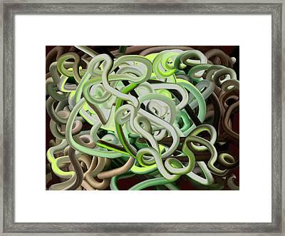 Untangled Framed Print by Rhonda Lee