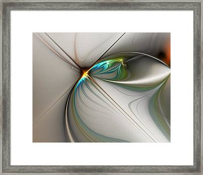 Untitled 02-16-10-a Framed Print by David Lane