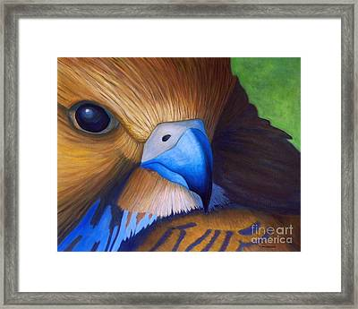 Up Close And Personal Framed Print by Brian  Commerford