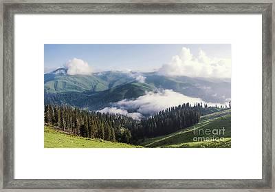 Up In A Sky Framed Print by Svetlana Sewell