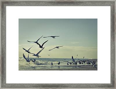 Up Up And Away Framed Print by Laura Fasulo