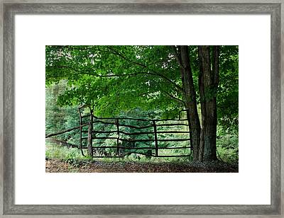 Upon A Crooked Stile Framed Print by Beverly Canterbury