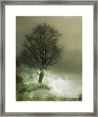 Upon The Windowsill Of Heaven Framed Print by Jan Piller