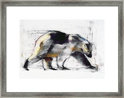 Ursus Maritimus Framed Print by Mark Adlington