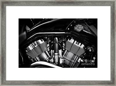 V Rod Muscle Framed Print by Tim Gainey