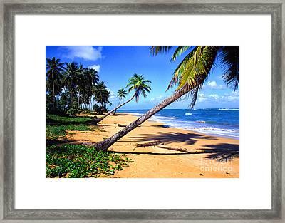 Vacia Talega Shoreline Framed Print by Thomas R Fletcher