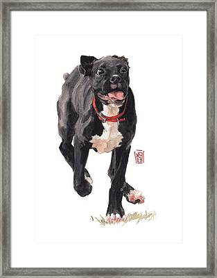 Valentine Framed Print by Debra Jones