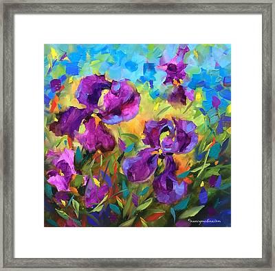 Vanishing Violet Irises Framed Print by Nancy Medina
