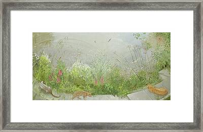 Vantage Point Framed Print by Timothy Easton