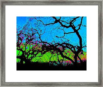Variations 1 Framed Print by Tim Tanis