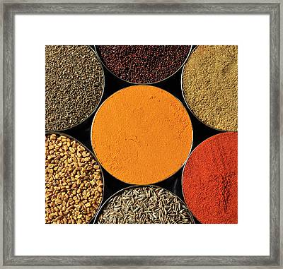 Various Kind Of Spices Framed Print by PKG Photography