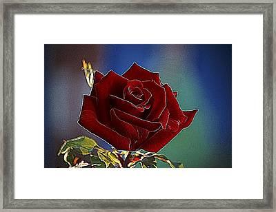 Velvet Rose Framed Print by Alexey Bazhan