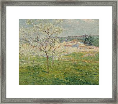 Verger Au Printemps Framed Print by MotionAge Designs