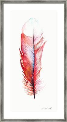 Vermilion Feather Framed Print by Willow Heath