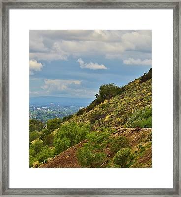 Vibrant Hillside Framed Print by Linda Brody