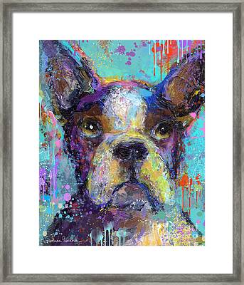Vibrant Whimsical Boston Terrier Puppy Dog Painting Framed Print by Svetlana Novikova