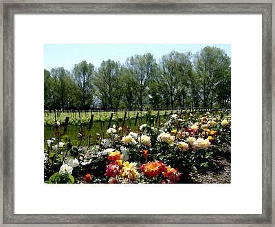View From Bridlewood Vineyards Framed Print by Kurt Van Wagner