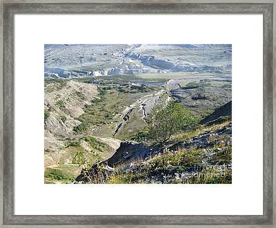 View From Johnston Ridge Observatory Framed Print by Tammy Miller