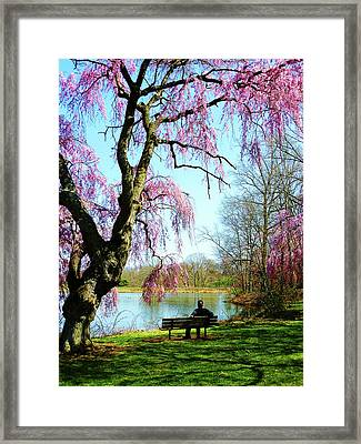 View Of The Lake In Spring Framed Print by Susan Savad
