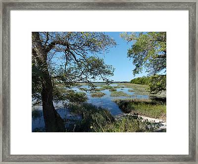 View To The Ashley Framed Print by Skip Willits