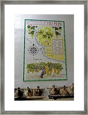 Vinedos Tio Pepe - Jerez De La Frontera Framed Print by Juergen Weiss