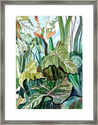 Vines Framed Print by Mindy Newman