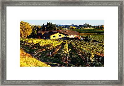 Vineyard 6 Framed Print by Xueling Zou