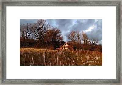 Vineyard House  Framed Print by Susanne Van Hulst