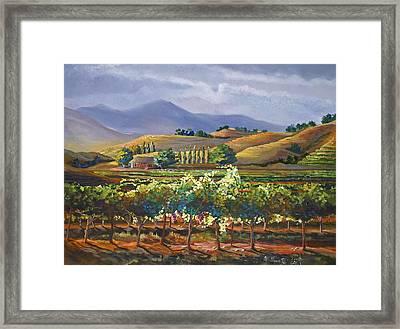 Vineyard In California Framed Print by Heather Coen