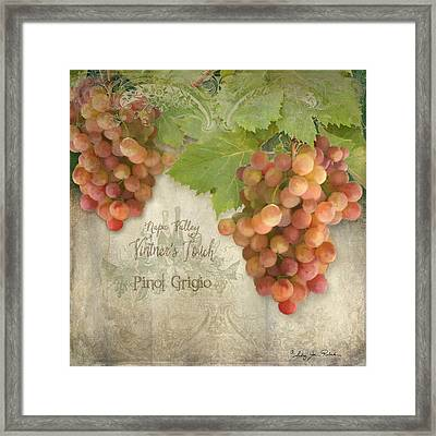 Vineyard - Napa Valley Vintner's Touch Pinot Grigio Grapes  Framed Print by Audrey Jeanne Roberts