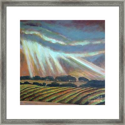 Vineyard Rain Framed Print by Kip Decker