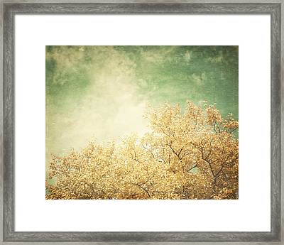 Vintage Autumn Framed Print by Lisa Russo