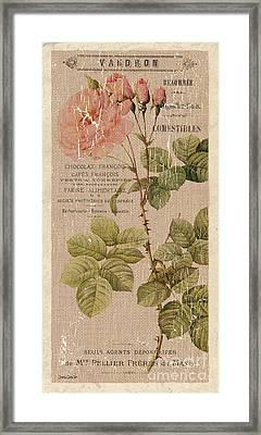 Vintage Burlap Floral 4 Framed Print by Debbie DeWitt