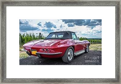 Vintage Corvette Sting Ray In Vineyard Framed Print by Edward Fielding