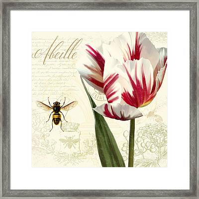 Vintage Elements Botanical Study, Tulip Bumble Bee Framed Print by Tina Lavoie